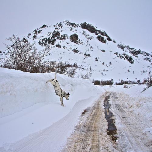 Vinteren nekter å slippe taket - kulden tar liv