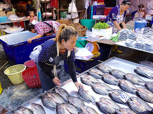 Bronin fish at Khlong Toei Market.