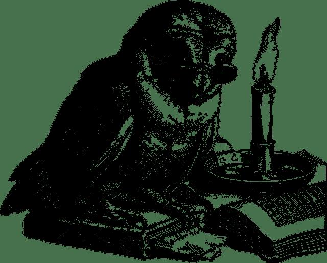 Hvordan lykkes profesjonelt og i privatlivet